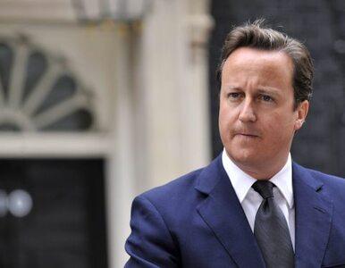 Cameron: nie zrezygnujemy z Falklandów